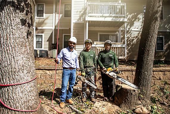 Tree Service in Decatur